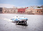 1-day St.Petersburg tour to Hermitage and Peterhof Gardens