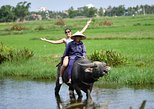 BUFFALO RIDING, BASKET BOAT TOUR AND COOKING CLASS