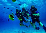 Open Water Diver course - Scuba World Divers