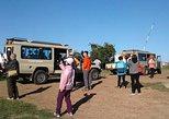4 Days 3 Nights Lake Nakuru Masai Mara Nairobi Big 5 Safari Package