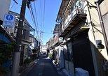 Tokyo Photogenic spots visiting tour