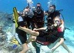 Diving Experience in Kisite Mpunguti