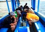Glass boat half day trip in Diani, Kenya