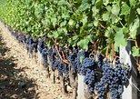 2 Day Bordeaux Wine Tour