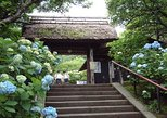 Kamakura Highlights Kotokuin and Hasedera with National Licensed Guide