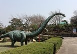 Jeju Dinosaur Land transfer,One way, Round trip
