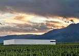 Exlusive Mendoza Vineyards Private Tour delivered by Owners and Wine Conosseurs