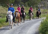 Riding tour to Munkedal beach