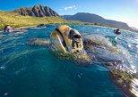 Charter Snorkel Adventure