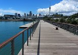 Discover Auckland City Sightseeing Tour ( Half Day )