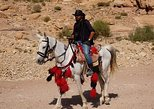 2 Hour Horseback Riding Treasury from the Top inside Petra Tour
