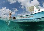 Discover Scuba Dive experience