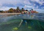 Coral restoration specialty course