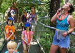 Daintree Discovery Centre Family Pass