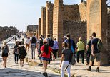 Pompeii: 2 hour walking tour with priority admission ticket