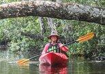 Lofton Creek Guided Kayak Tour - Amelia Island