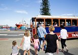 Australia & Pacific - Australia: Fremantle Hop-On Hop-Off Tram Tour