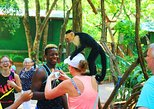 Cruise Ship Guests Sightseeing, Wildlife & Transfer Tour