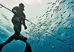 2 Hour Spearfishing Tour