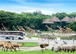 BANGKOK: JOIN FULL DAY TOUR SAFARI WORLD (LUNCH INCLUDED)