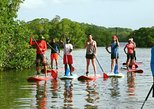 Family Paddle Board Tour - Excursion Familial De Paddle Board
