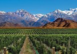 Viagem de 4 dias em Mendoza e Os Andes. Mendoza, ARGENTINA