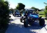 Electric Adventures Buggy Rental