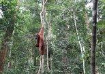 6D5N Highlights of North Sumatra