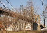 Private half day Brooklyn walking tour