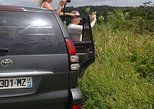 Day Excursion In Forest North Basse-Terre 119 euros