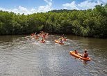 SoCoHo Half Day Jeep Safari- Mangrove Kayak & Reef Snorkeling