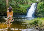Hilo Tropical Waterfalls Tour