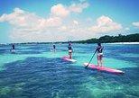 Lagoon Paddle Board Hike - Randonnée Lagon Paddle Board