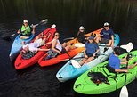 Amelia Island Eco Easy Guided Kayak Tour