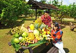 Penang City Tour with Tropical Fruit Farm Admission Tickets