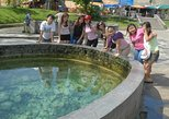 Hot Spring and Templers Park Waterfall Tour from Kuala Lumpur - 1 Day
