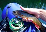 Beginner's Fly Fishing Tour
