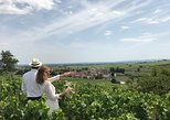Small-Group Day Tour from Dijon to Beaune including Wine Tastings and Lunch