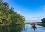 Daily 2 hour Guided Kayak and Nature Tours