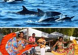 Dolphins, BBQ, Sega Dance & Music on Bénitiers Island, Mauritius