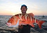 Port Douglas Inshore fishing trips - Private Charters
