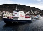 Bergen: Sightseeing Fjord Cruise