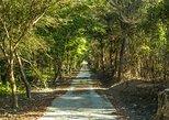 Hualien Totoro Forest Motorbiking(ATV or Dirt-bike)-Suitable for family trip!