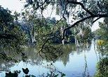 A Walk in the Park: City Park New Orleans Audio Tour by VoiceMap