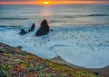 4 hour San Francisco Bay Photography Guide