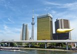 A Delightful Tokyo Port Stopover Experience