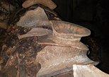 Archaeology Mayan Ceramics