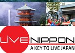 1 day private charter mt Fuji and Hakone trip with English speaking Guide