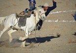 Mongolia horseback tour