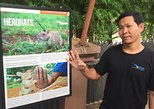 Private Tour: HERO Rats & Angkor National Museum